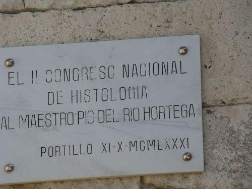 Placa de homenaje a Pío del Río Hortega en el castillo de Portillo.