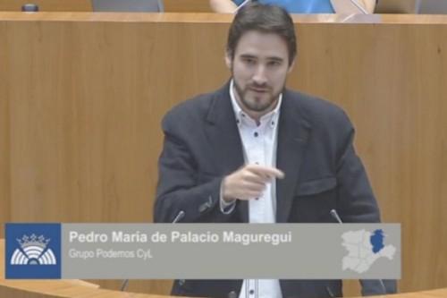 Pedro de Palacio, podemita condenado por tocamientos y abusos deshonestos. Procurador en las Cortes de Castilla y León.